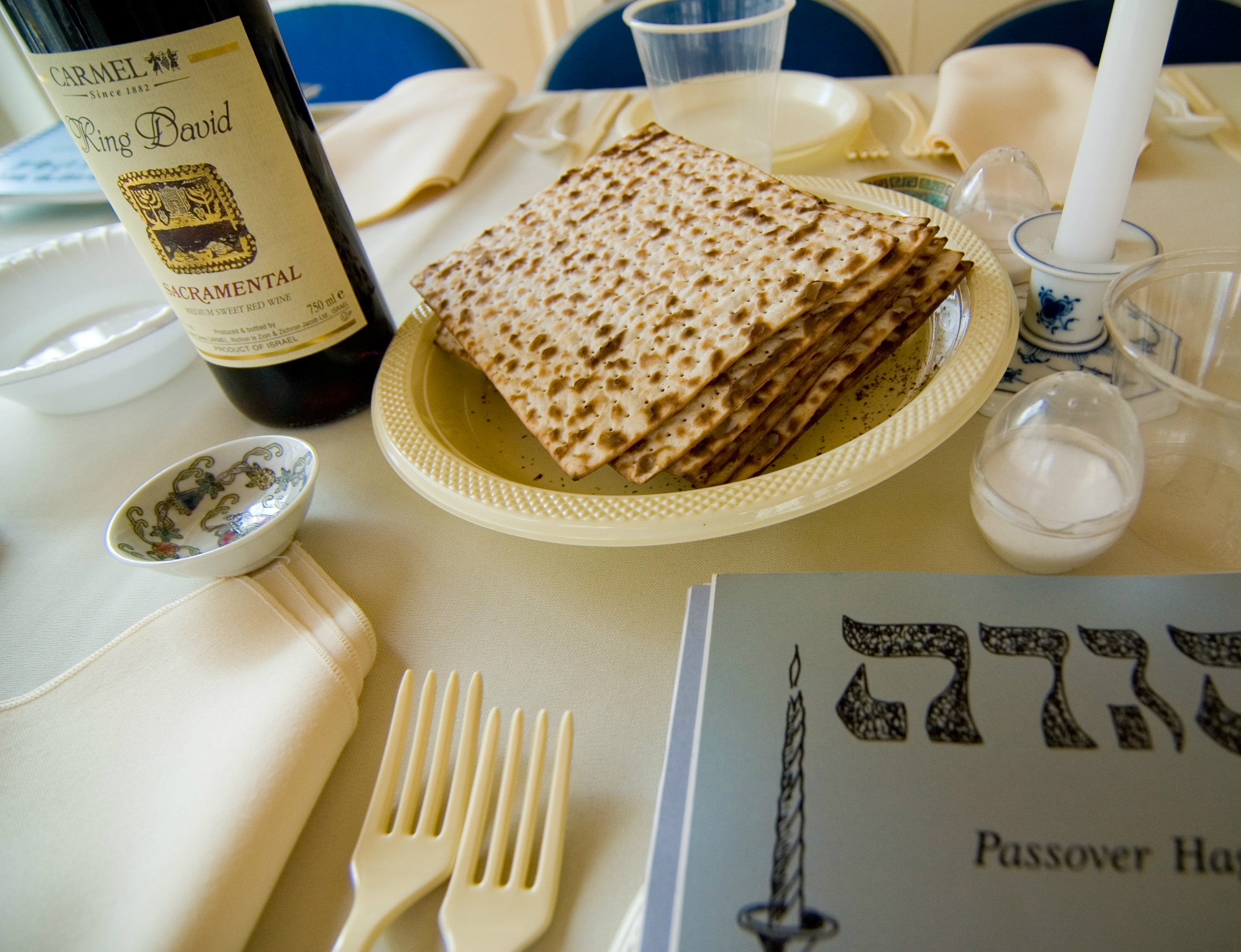 Pass the Matzah, Please: Passover Seders in Fiction | Chicago Public ...